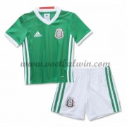 Mexico Elftal Voetbaltenue Kind 2016-17 Thuisshirt..