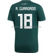 Goedkope Voetbaltenues Mexico Elftal WK 2018 Andres Guardado 18 Thuisshirt..